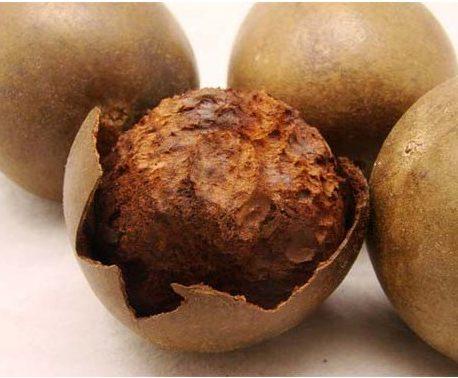 Fruit de Siraitia Grosvenorii (Luo Han Guo)