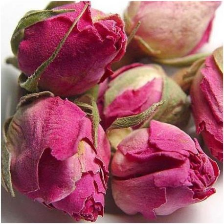 Bouton de rose séché