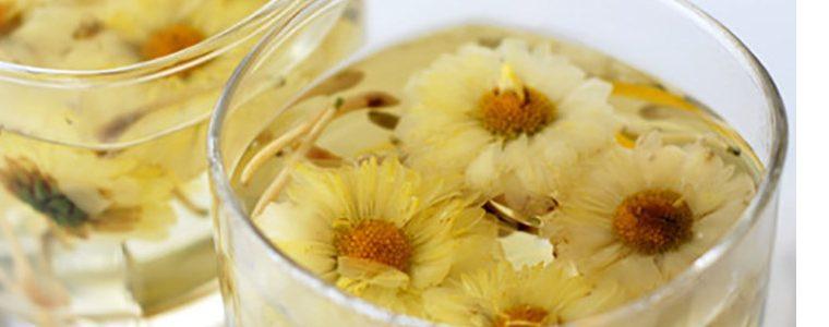 fleurs de chrysanthème pour slider