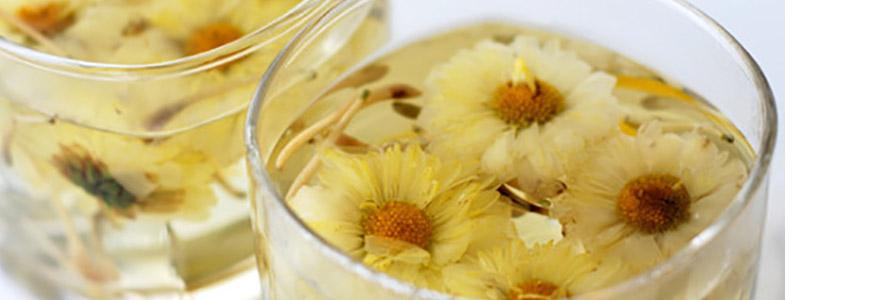 Les fleurs de chrysanthèmes