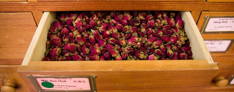 Bourons de rose pour slider