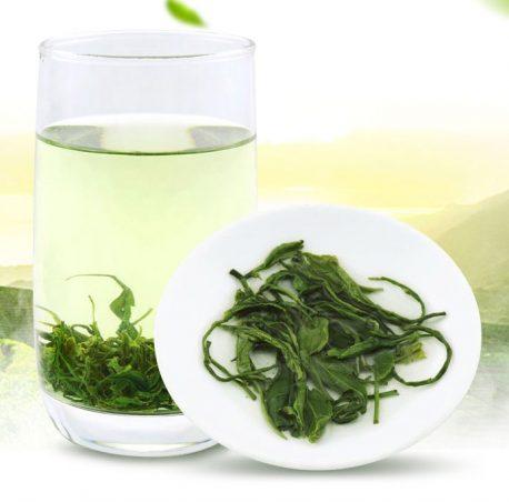 Thé vert bio humide